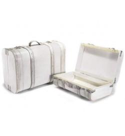 Bauli organizer per la casa a forma di valigia